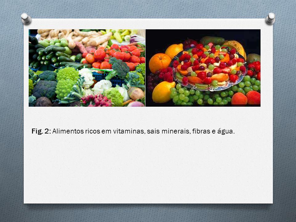 O O que é.Alimentos Ricos em Lipídios: São alimentos ricos em gorduras.