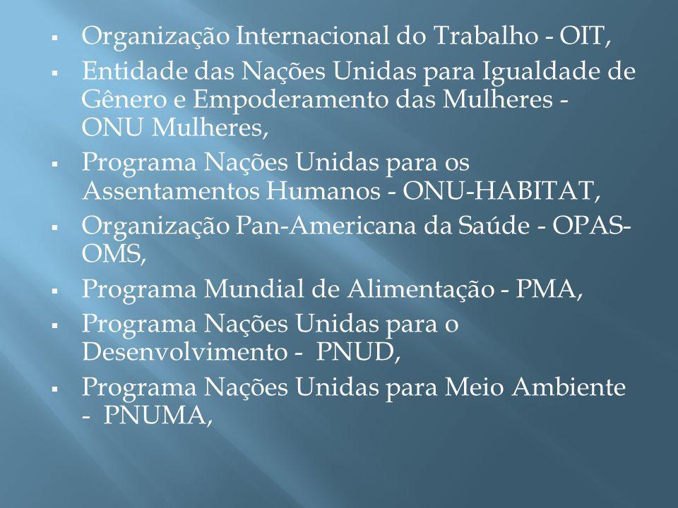 União Internacional de Telecomunicações - UIT, Programa Conjunto das Nações Unidas sobre HIV/AIDS - UNAIDS, Organização Nações Unidas para Educação, Ciência e Cultura - UNESCO, Fundo de População das Nações Unidas - UNFPA, Centro de Informação das Nações Unidas para o Brasil - UNIC, Fundo das Nações Unidas para a Infância - UNICEF, Organização das Nações Unidas para o Desenvolvimento Industrial - UNIDO, Programa Nações Unidas sobre Drogas e Crime - UNODC.