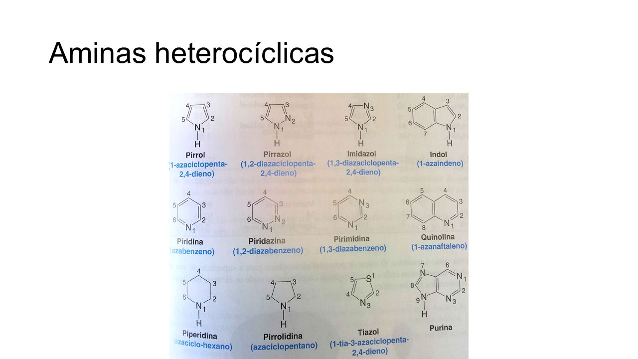 Síntese de aminas Substituição nucleofílica, alquilação da amônia (alquilações múltiplas!) Alquilação do íon azida Síntese de Gabriel: ftalimida de potássio Redução de nitrocompostos (aminas aromáticas) Aminação redutora de aldeídos e cetonas Redução de nitrilas, oximas e amidas Degradação de Hofmann: R-CO-NH 2 + Br 2 + 4NaOH R-NH 2 + 2 NaBr + Na 2 CO 3 + 2H 2 O