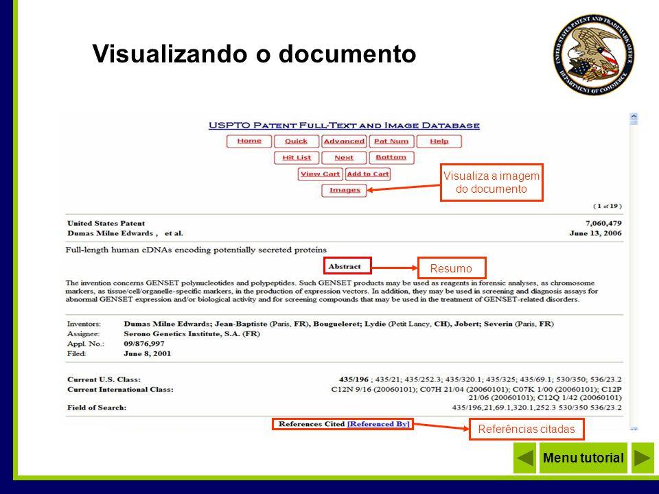 Visualizando a imagem Total de páginas do documento Dica: Para imprimir ou salvar a imagem, utilize os recursos do browser Para visualizar demais páginas Menu tutorial