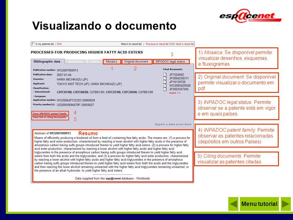 Visualizando a patente 1 1) Print: Imprimir o documento 2 2) Maximise: Visualizar em tela inteira 3 3) Save Full Document: Salvar em PDF: Menu tutorial