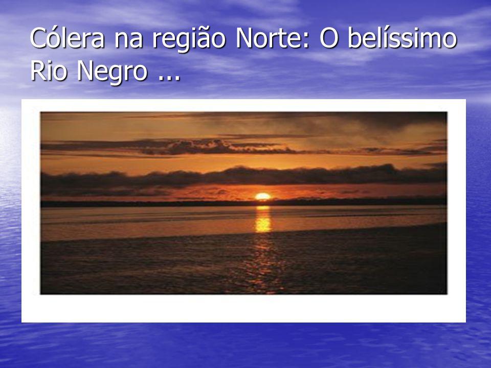 Cólera na região Norte: O também belo rio Solimões...