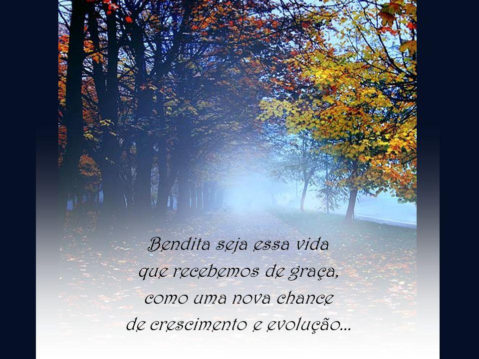 Bendita seja essa vida que recebemos de graça, como uma nova chance de crescimento e evolução...