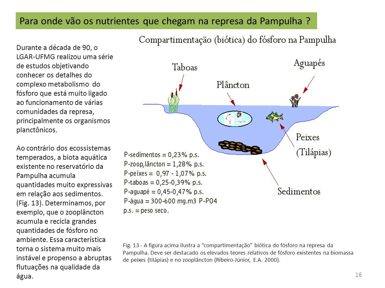 Fig.14 - Balanço de massa de fósforo na Pampulha (Torres et al.