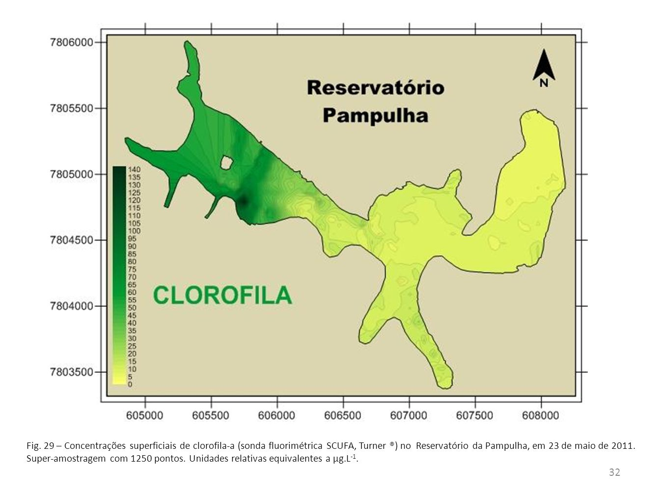 O zooplâncton vem sofrendo com a degradação da represa da Pampulha.