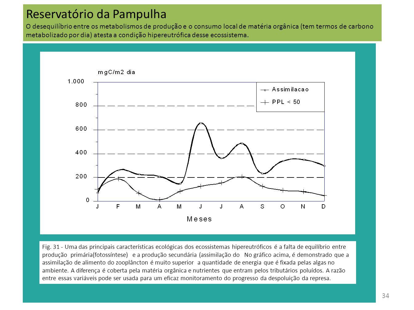 35 Macrófitas aquáticas na Pampulha Fig.