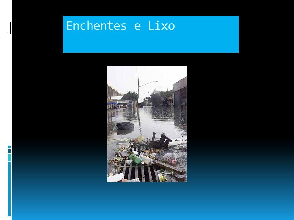 Enchentes Urbanas Causas, monitoramento e soluções
