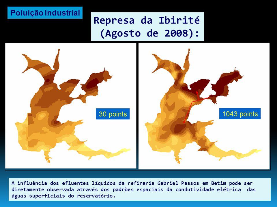 Represa da Ibirité (Agosto de 2008): A entrada de sais e demais nutrientes em excesso na represa gera um aumento descontrolado da biomassa de algas e cianobactérias.