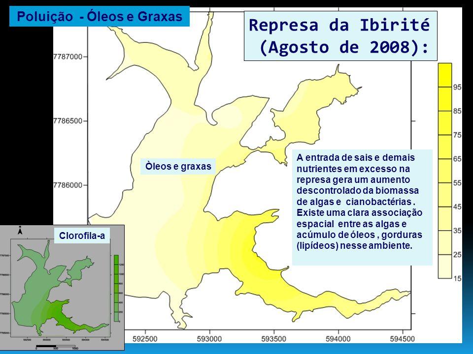 Represa de Três Marias (Julho de 2006): Existe uma clara associação entre o padrão espaço-temporal de fósforo na represa e a localização dos grandes projetos de irrigação situados nas imediações de Morada Nova de Minas.
