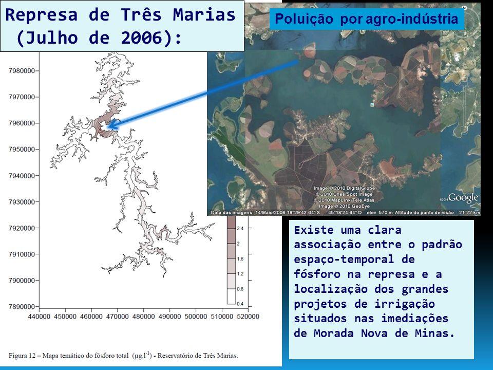 Relações entre as concentrações de fósforo total e sólidos em suspensão nos rios que participam do programa mundial da UNESCO (PHI).