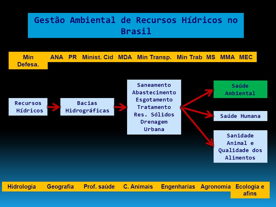 A gestão ambiental de Recursos Hídricos no Brasil deve requer uma ação articulada de diversos especialistas Disponibilidade de Água Prestação de Serviços de Saneamento Conservação de Recursos Hídricos Sanitaristas Hidrólogos e afins Limnólogos e afins
