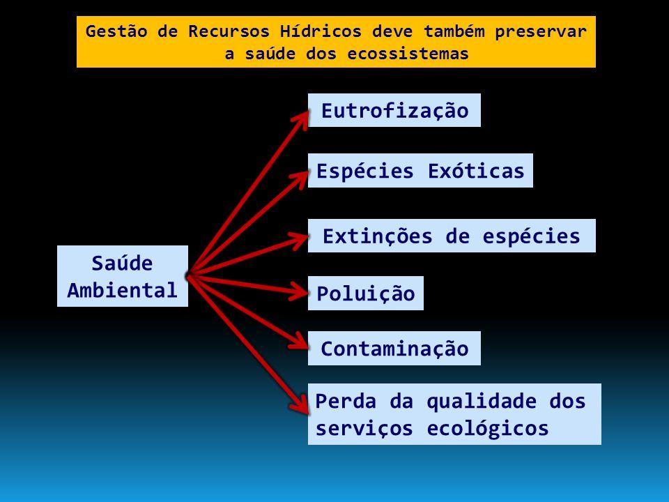 MMA e ANA Ministério das Cidades Ministério Integração Outros que atuam mas não aparecem na cena...