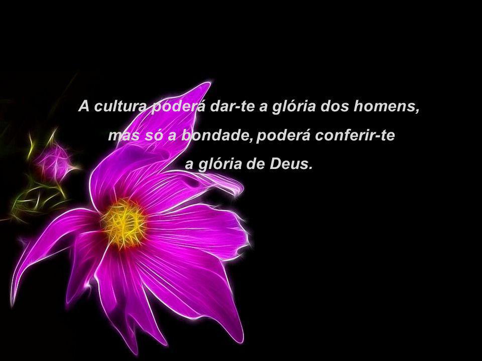 A cultura poderá dar-te a glória dos homens, mas só a bondade, poderá conferir-te a glória de Deus.