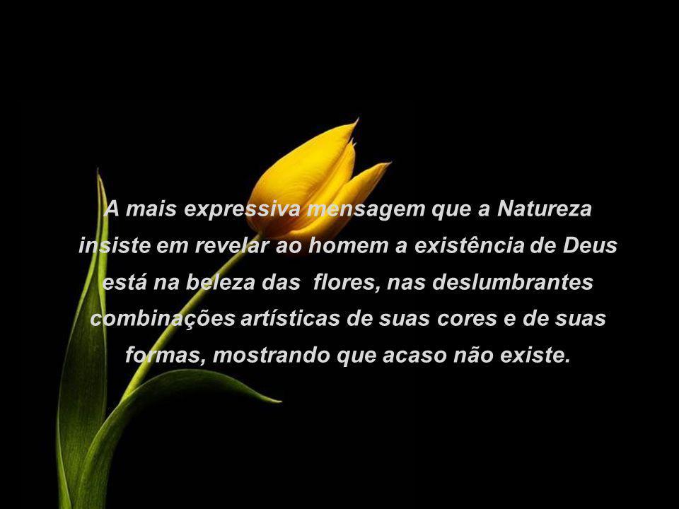 A mais expressiva mensagem que a Natureza insiste em revelar ao homem a existência de Deus está na beleza das flores, nas deslumbrantes combinações artísticas de suas cores e de suas formas, mostrando que acaso não existe.