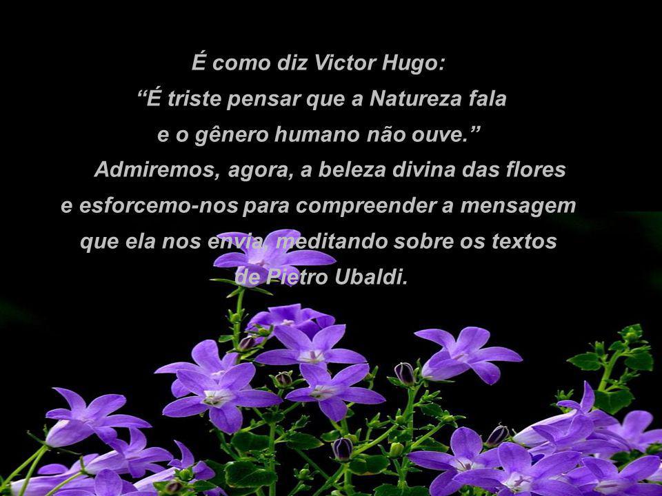 É como diz Victor Hugo: É triste pensar que a Natureza fala e o gênero humano não ouve.