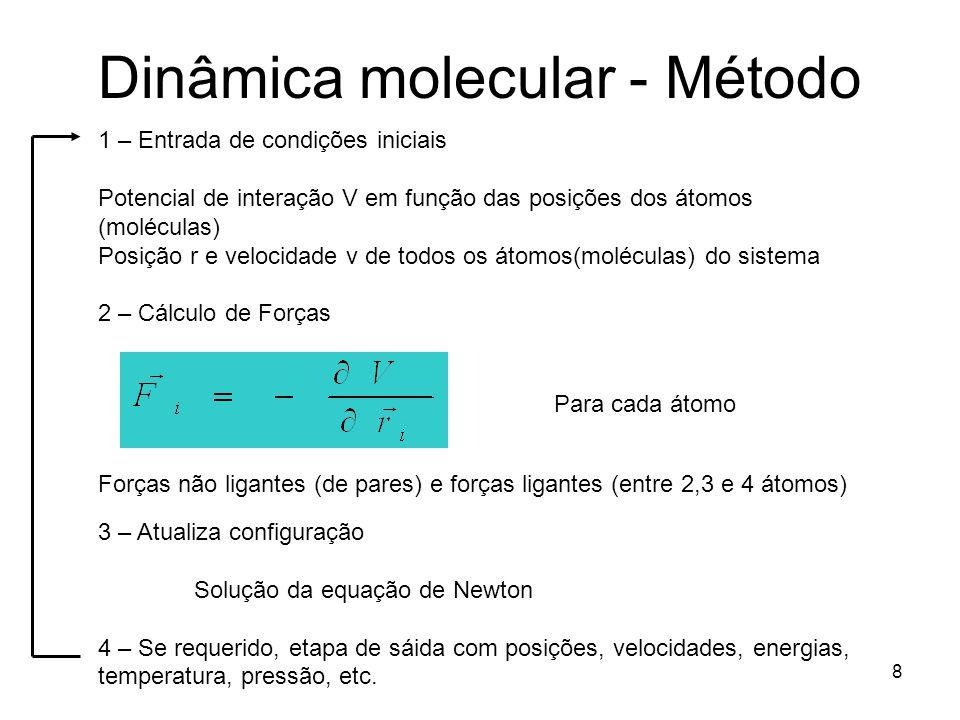 9 Exemplo: Ar líquido 400 átomos (20 x 20) Fernando Rocha (PIBIC/CNPq)