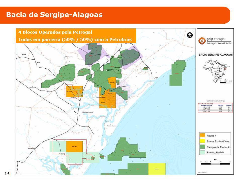 15 Bacia de Pernambuco-Paraíba (mar) Participação de 20% em 3 blocos (9ª rodada)