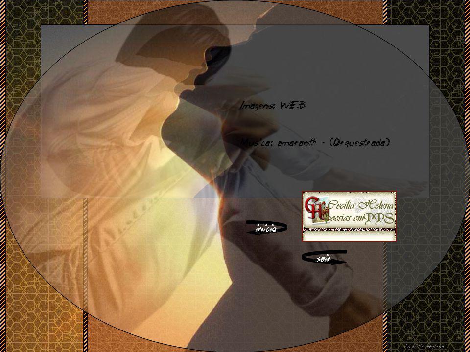 Imagens: WEB Musica: amaranth – (Orquestrada) inicio sair ©Cecilia Helena