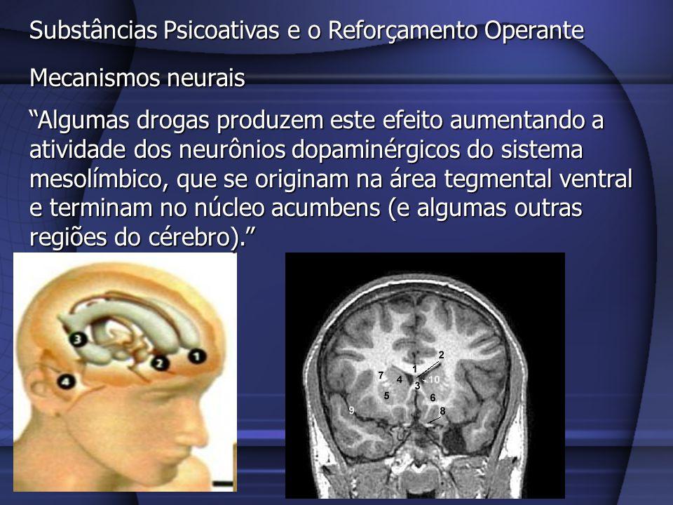 Substâncias Psicoativas e o Reforçamento Operante Mecanismos neurais A ativação do sistema límbico dopaminérgico possibilita a ocorrência da base biológica da aprendizagem.
