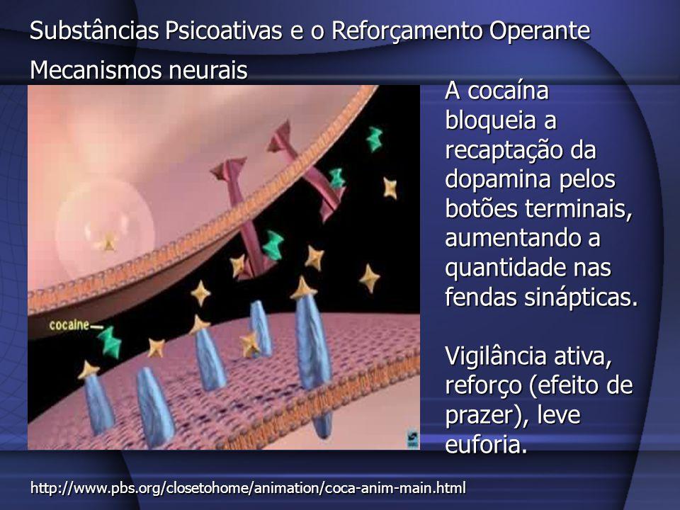 Substâncias Psicoativas e o Reforçamento Operante Mecanismos neurais As anfetaminas liberam a dopamina dos neurônios dopaminérgicos.