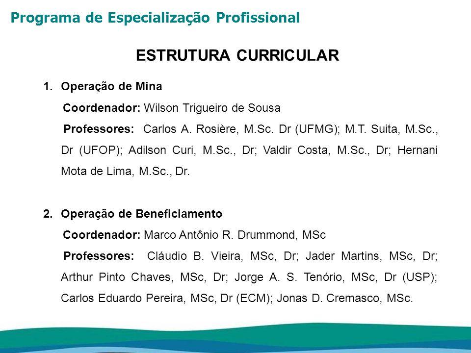 Programa de Especialização Profissional ESTRUTURA CURRICULAR 3.Operação de Pelotização Coordenador: Eloísio Queiroz Pena, M.