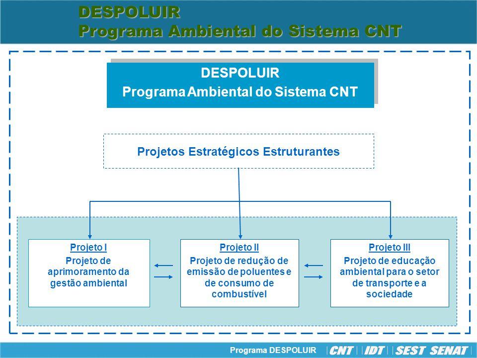 Programa DESPOLUIR Despoluir - Projeto I: Aprimoramento da Gestão Ambiental Objetivo: Promover a melhoria da gestão ambiental voltada para desenvolvimento sustentável.