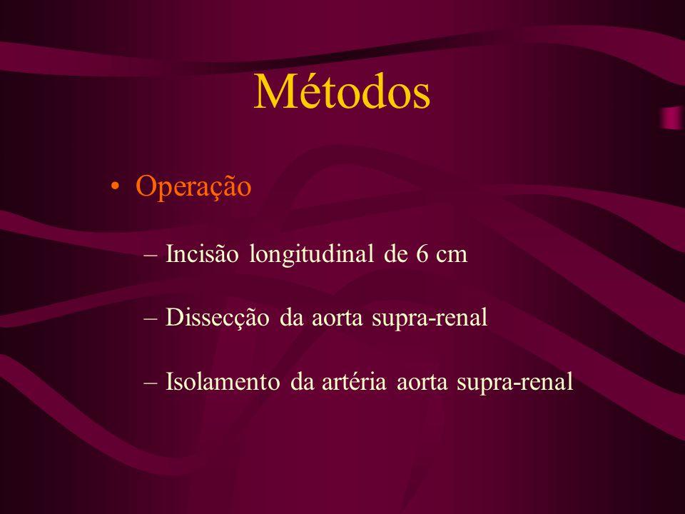 Métodos Operação –Oclusão artéria aorta supra-renal – 2 h / reperfusão 2 h (GII, GIII, GIIII) –Solução salina (GII) e Pentoxifilina(GIII) alfatocoferol (GIV) –GI - controle –Amostras de sangue –Biópsia do do tecido renal –Eutanásia – Dose letal com anestésico