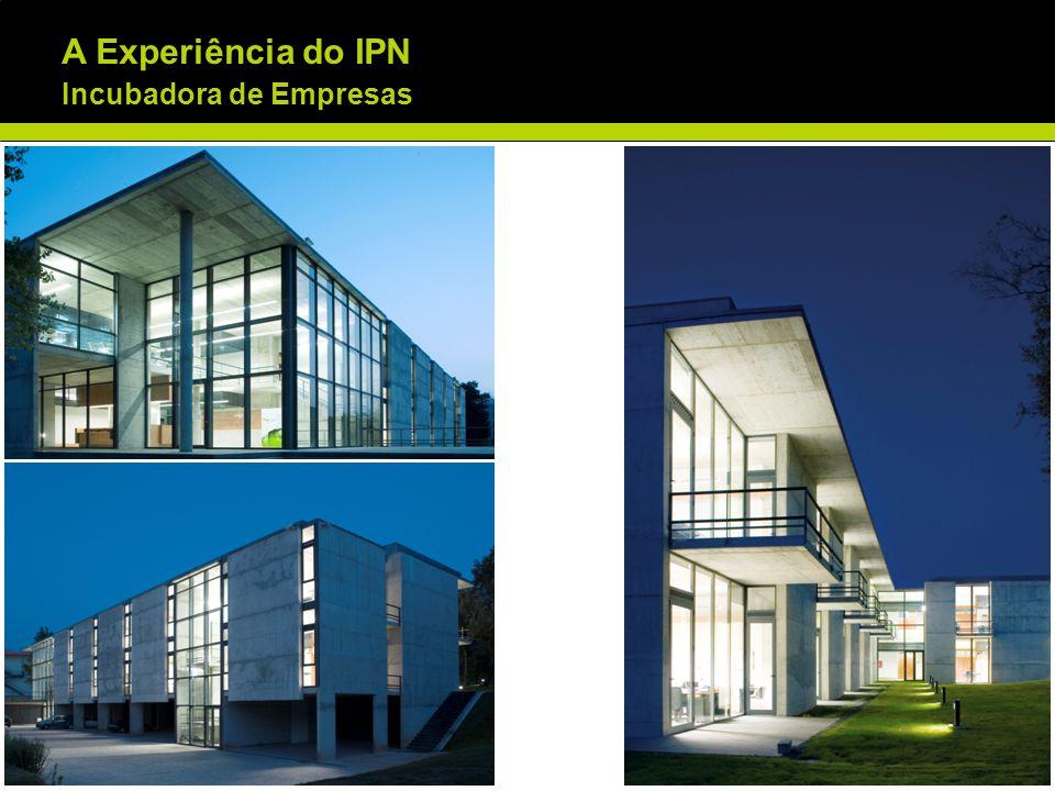 INCUBADORA DE EMPRESAS DO IPN 1996 – 2011 Total de Empresas Incubadas (Dez.