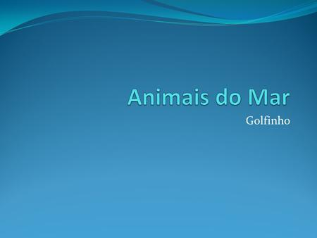 Animais do Mar Golfinho.
