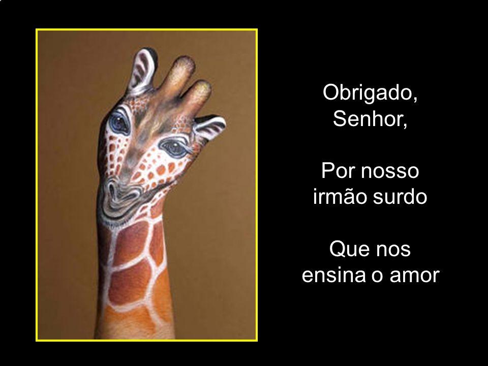 adao-las@ig.com.br Obrigado, Senhor, Por nosso irmão surdo Que nos ensina o amor
