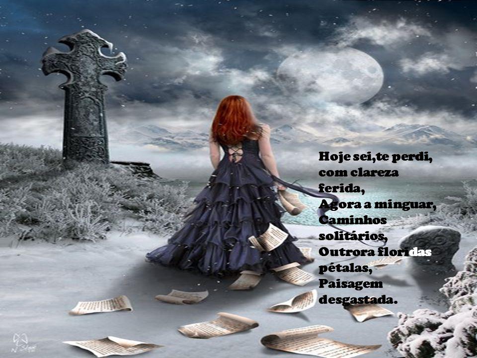 Hoje sei,te perdi, com clareza ferida, Agora a minguar, Caminhos solitários, Outrora floridas pétalas, Paisagem desgastada.