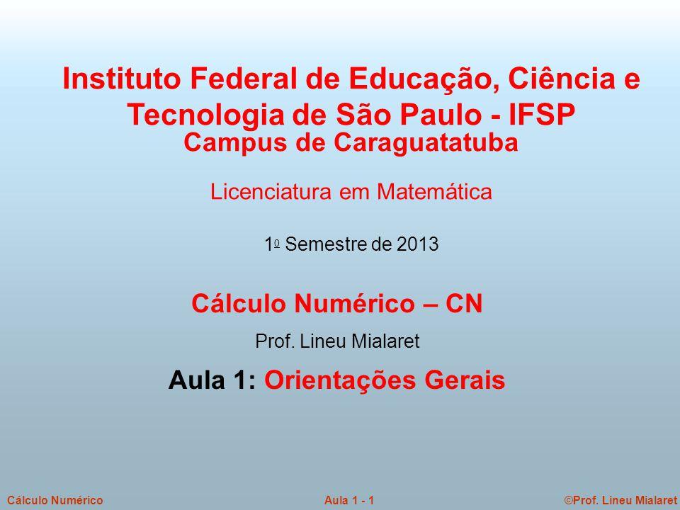 ©Prof.Lineu MialaretAula 1 - 2Cálculo Numérico Informações sobre o Prof.