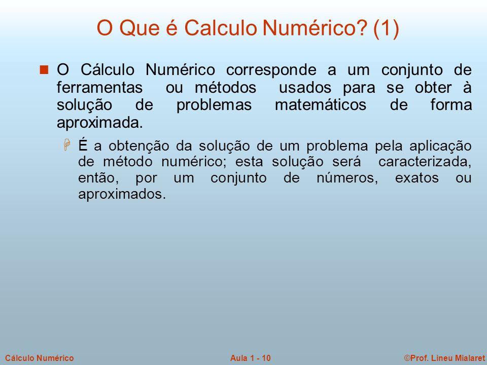 ©Prof.Lineu MialaretAula 1 - 11Cálculo Numérico O Que é Calculo Numérico.