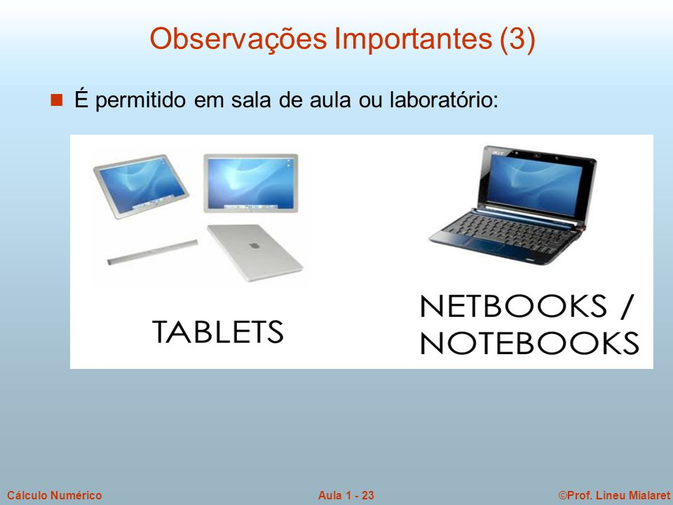 ©Prof.Lineu MialaretAula 1 - 24Cálculo Numérico Informações sobre Vocês!.
