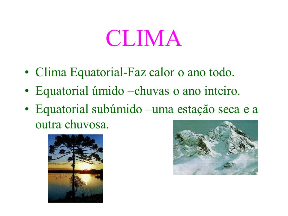 CLIMA Clima Equatorial-Faz calor o ano todo.Equatorial úmido –chuvas o ano inteiro.