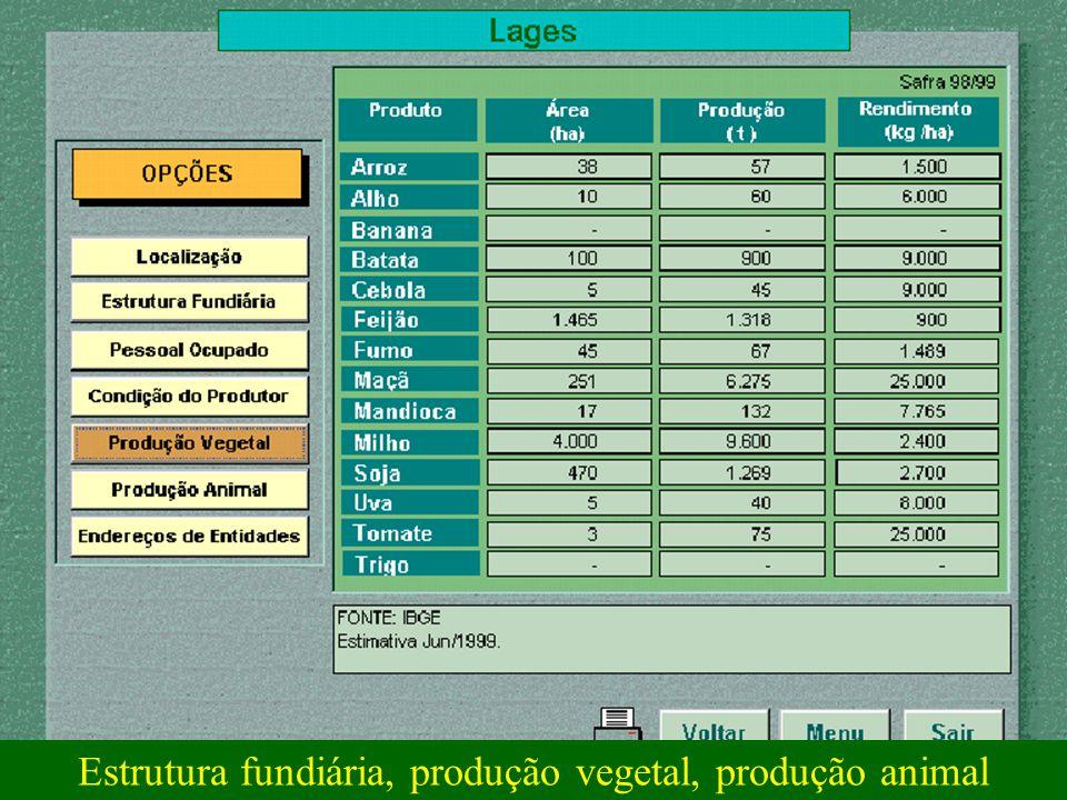 Estrutura fundiária, produção vegetal, produção animal