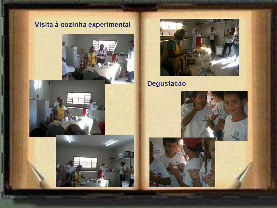 Visita à cozinha experimental Degustação