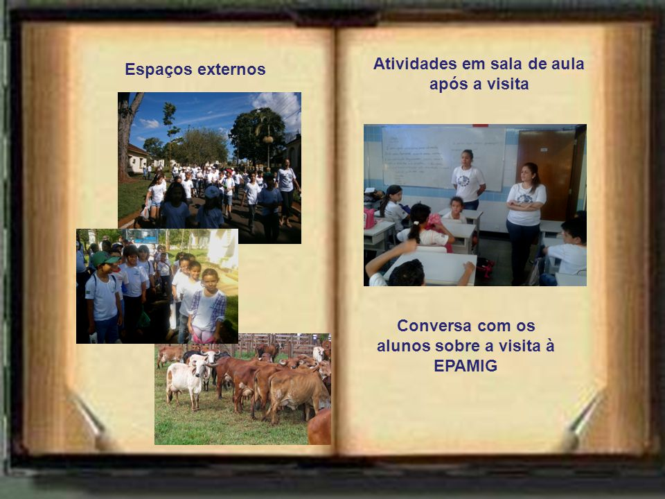 Espaços externos Atividades em sala de aula após a visita Conversa com os alunos sobre a visita à EPAMIG