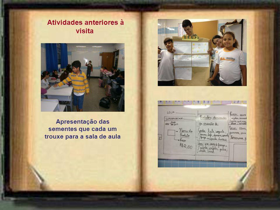 Atividades anteriores à visita Apresentação das sementes que cada um trouxe para a sala de aula