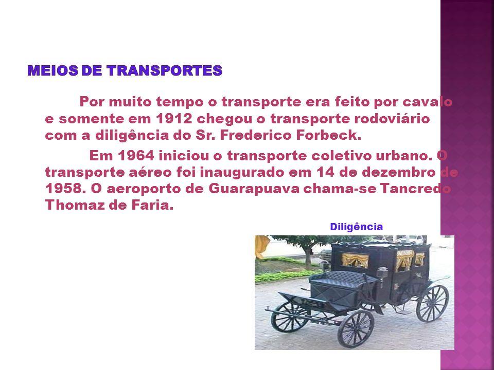 Principais Pontos Turísticos Guarapuava foi crescendo, se desenvolvendo e hoje é conhecida como pólo da região centro do Paraná.