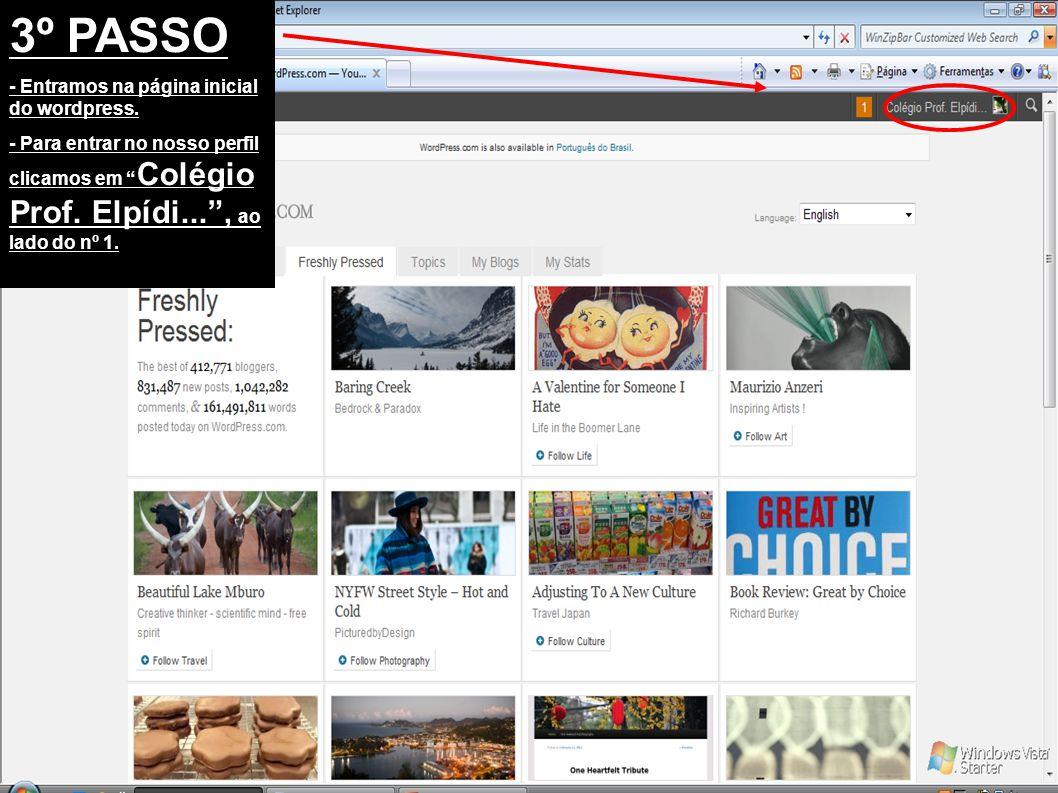 4º PASSO - Entramos no nosso perfil.- Agora clique em Páginas , no menu a esquerda.
