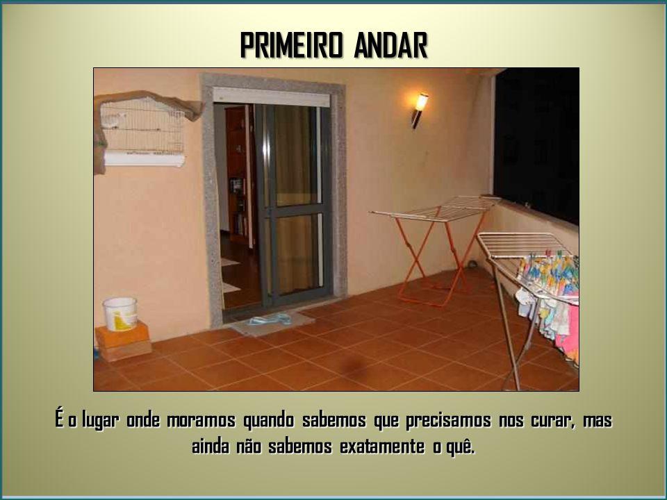 PRIMEIRO ANDAR É o lugar onde moramos quando sabemos que precisamos nos curar, mas ainda não sabemos exatamente o quê.