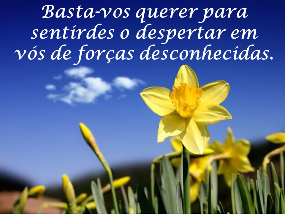 Crede em vós, em vosso rejuvenescimento em novas vidas; crede em vossos destinos imortais.