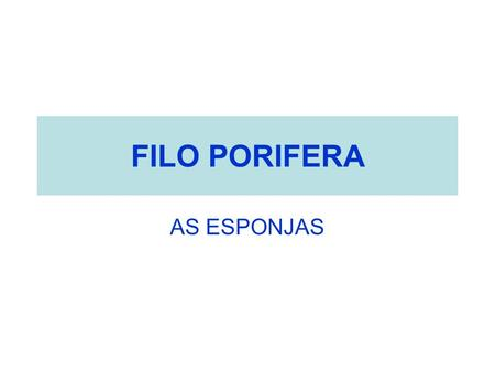 FILO PORIFERA AS ESPONJAS.