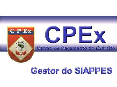 Gestor do SIAPPES.