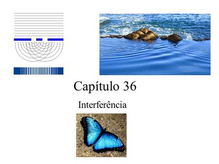 Capítulo 36 Interferência.