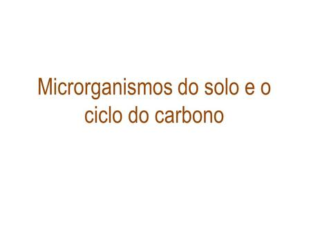 Microrganismos do solo e o ciclo do carbono