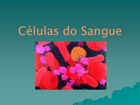 Células do Sangue.