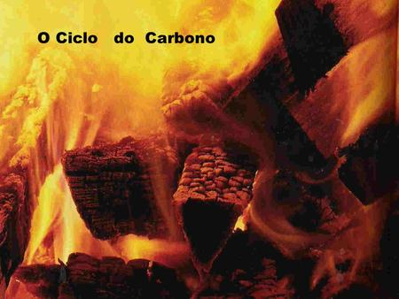 O Ciclo do Carbono.