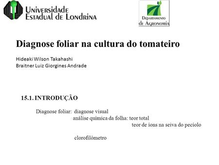 Diagnose foliar na cultura do tomateiro Hideaki Wilson Takahashi Braitner Luiz Giorgines Andrade 15.1. INTRODUÇÃO Diagnose foliar: diagnose visual análise.